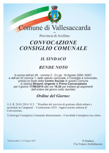 2-ConsiglioComunale_17062014